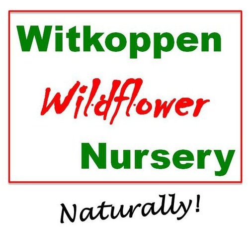 Witkoppen Wildflower Nursery